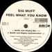 BIG MUFF - Feel What You Know (Smith & Mighty Rmx)