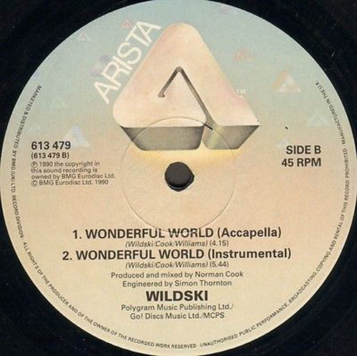 WILDSKI - Wonderful World