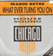 MARIO REYES - What Ever Turns You On