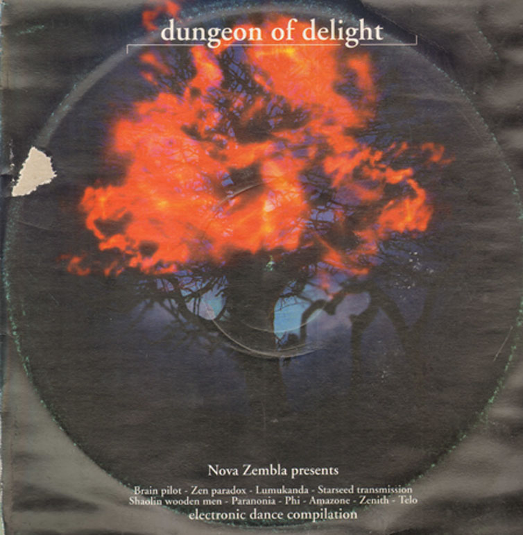 VARIOUS - Dungeon Of Delight