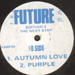 ELECTRA - Autumn Love / Purple