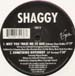 SHAGGY - Something Different