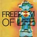 AWESOME 3 - Freedom Of Life