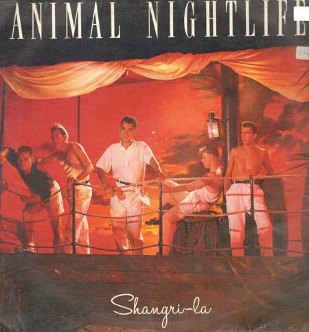 Animal Nightlife Shangri La