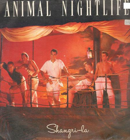 Animal Nightlife Shangri La